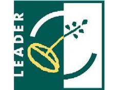 04 Leader